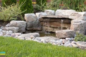 landscape design around your pool